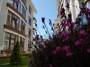 karasu-satılık-yazlık-eksioglu-city-evleri-6